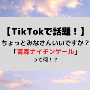 【TikTokで話題!】青森ナイチンゲールって?元ネタは?メンバーは?【ちょっとみなさんいいですか?】